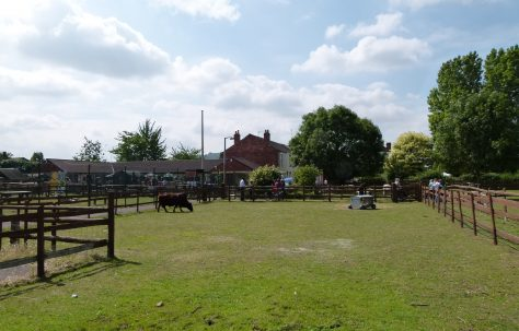 Concerns over Barton and Tredworth's Open Spaces